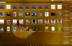 Установка Smart Scopes в Ubuntu 13.04