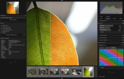 Darktable 1.2 — Радость фотографов с Ubuntu