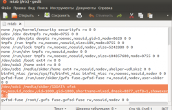 Простой способ автоматического монтирования жёстких дисков в Ubuntu