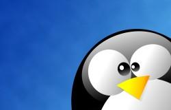 Ubuntu 15.10 (Wily Werewolf) скоро будет переведен на ядро Linux 4.1 LTS