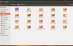 Nautilus 3.4 в Ubuntu 13.04 (SolusOS)