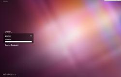 Первый скриншот темы LightDM Greeter