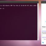 Skype в Ubuntu 11.04