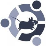 Размер установщика Xubuntu 13.04 увеличится до 1Gb