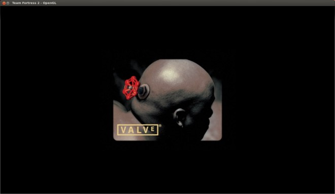 Скриншоты работы Team Fortress 2 в Ubuntu