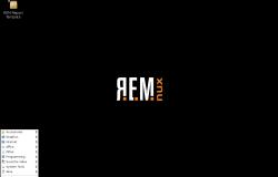 Remnux 4.0